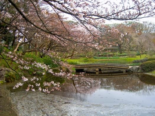 Ninomaru Gardens